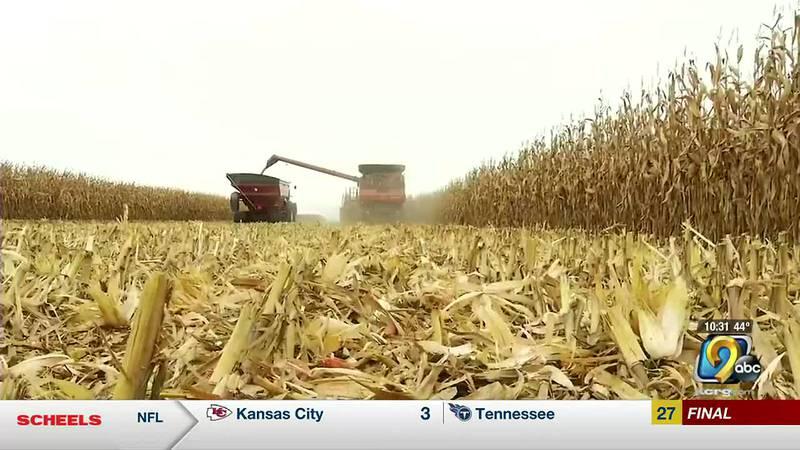 Farmers harvest corn at Field of Dreams