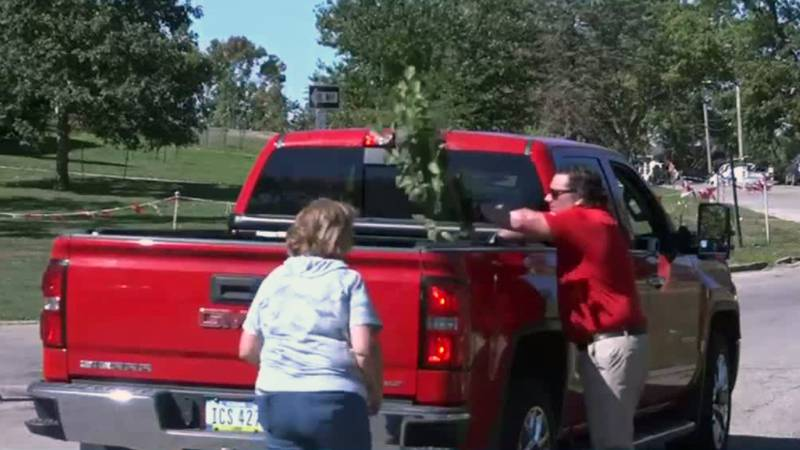 A tree is loaded into a pickup truck during an event put on by Trees Forever and others on...