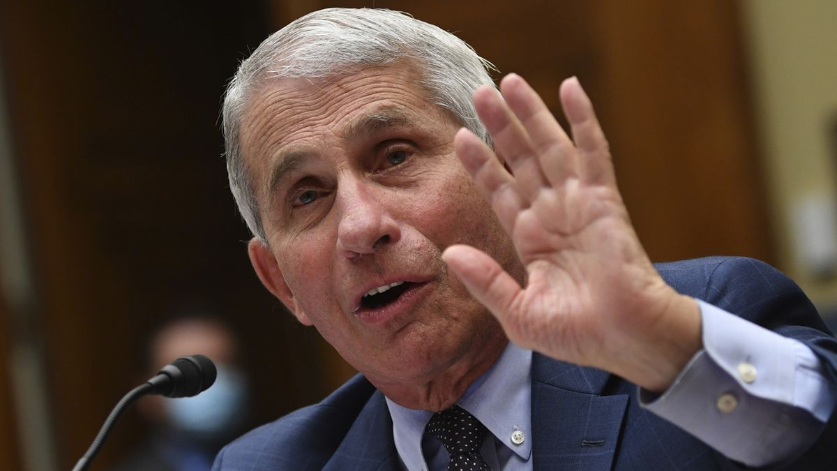 Dr. Anthony Fauci, director of the National Institute for Allergy and Infectious Diseases, testifies during a House Subcommittee hearing on the Coronavirus crisis, Friday, July 31, 2020 on Capitol Hill in Washington.