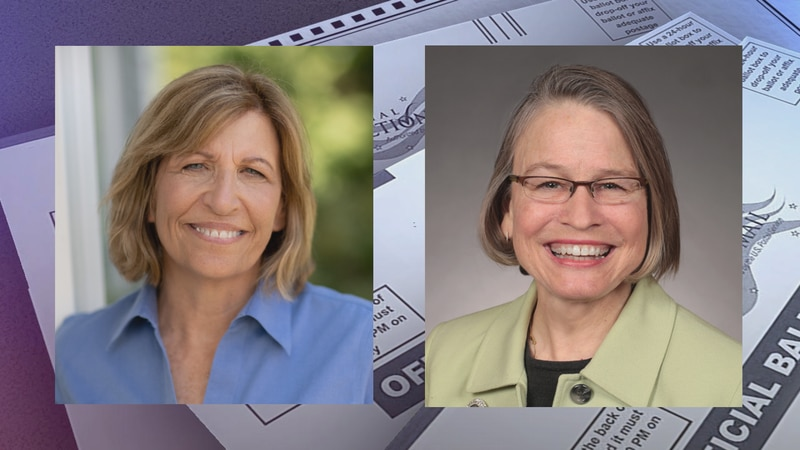 Iowa Congressional candidate Rita Hart has filed a U.S. House appeal over 6-vote loss.