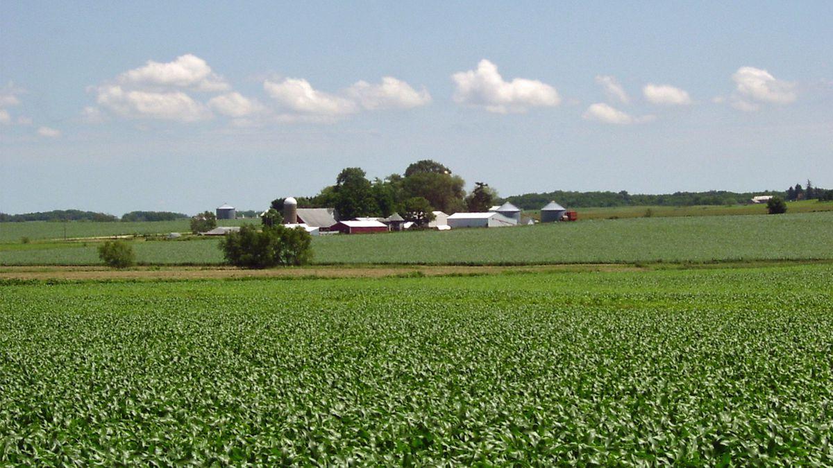 An Iowa farm field (KCRG File Photo)