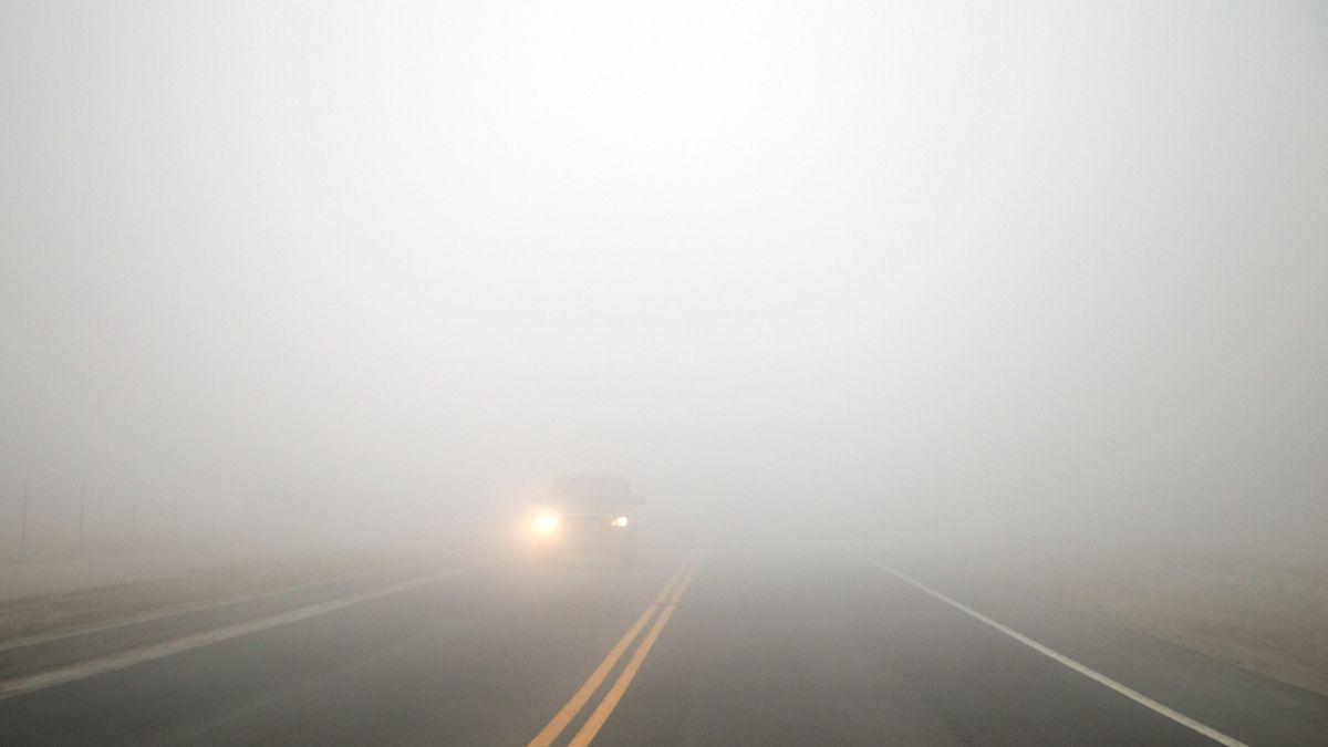 Foggy road conditions. Image is tinted blue-ish by foggy conditions.