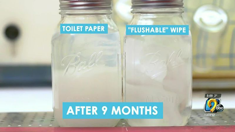 Flushable wipe difference.