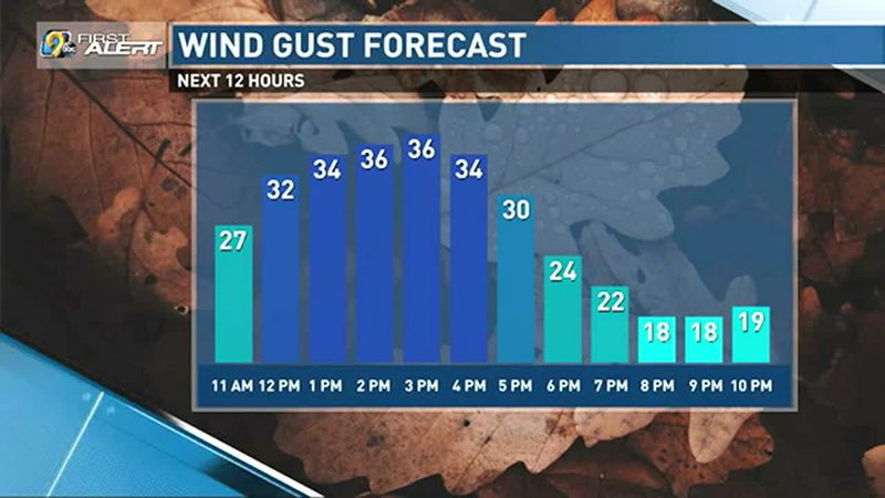 Wind gusts up to 35 mph this afternoon.