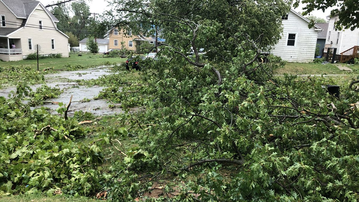 Damaged tree limbs and branches on A Avenue NW in Cedar Rapids.