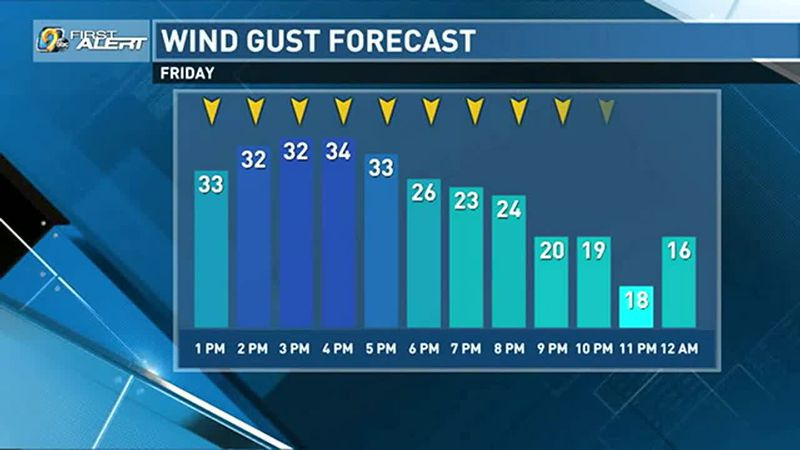 Cloudy, cold, and windy day ahead.