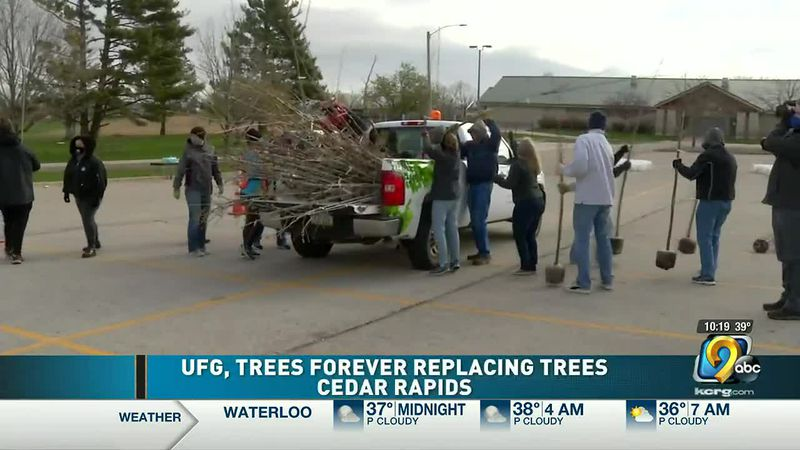 United Fire Group, Trees Forever help replace trees in Cedar Rapids