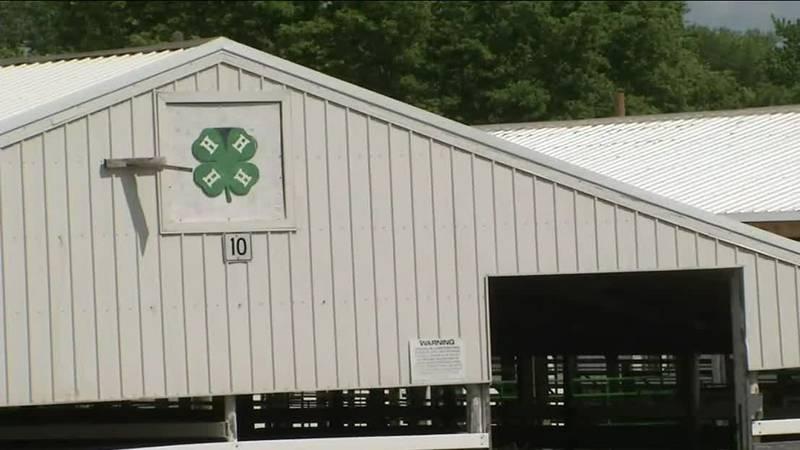 A 4-H barn at the Linn County Fairgrounds on Tuesday, June 8, 2021.