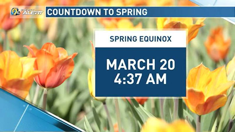 Sunshine and southerly winds will make for a warmer weekend ahead.