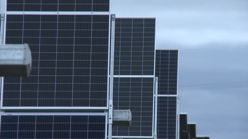 Palo solar farm manager worked on county committee voting on project