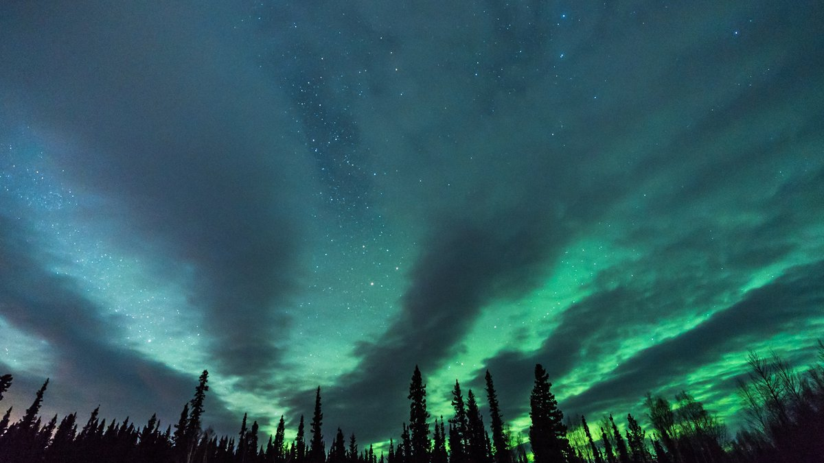Shot in the interior of Alaska from Birch Lake, purplish clouds and green aurora are fanned out...
