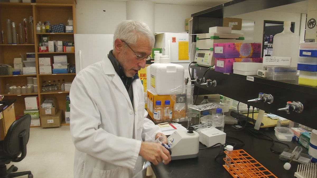 UIHC Professor of Microbiology and Immunology: It's not likely Iowa will see a case of...