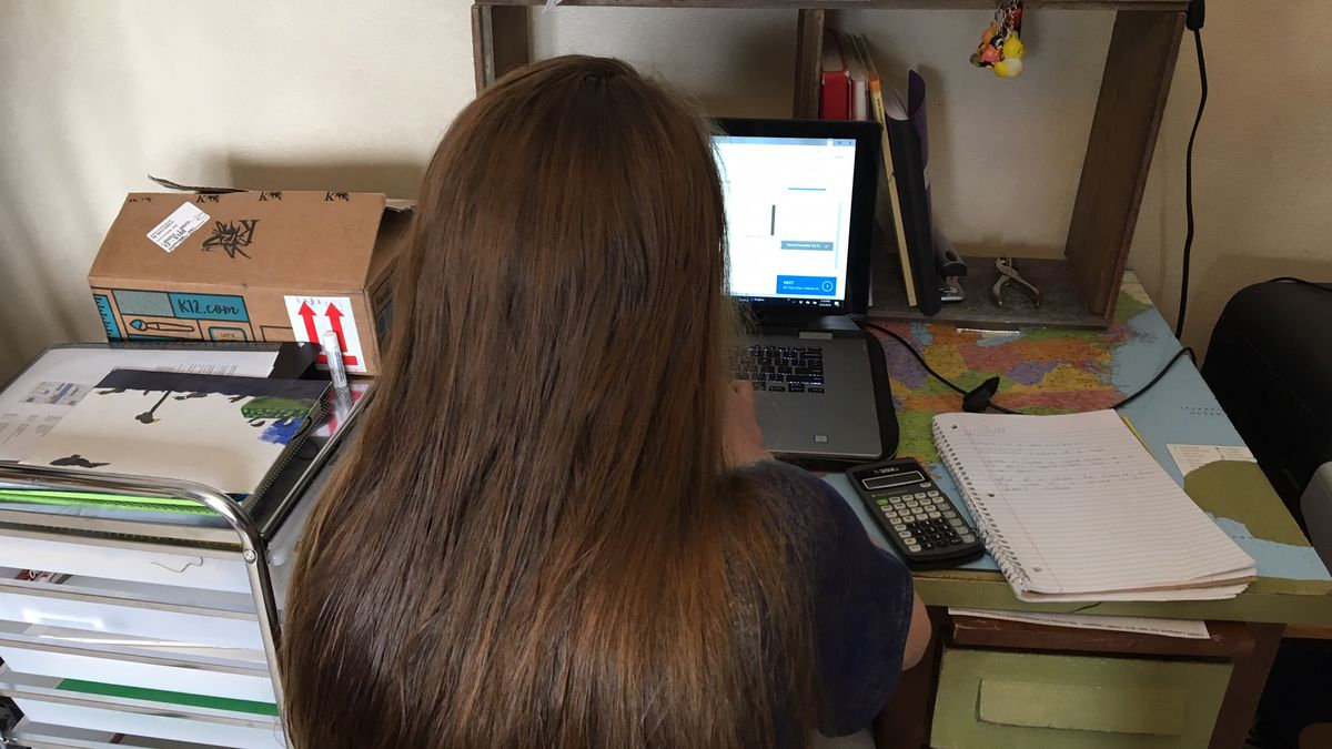 Samantha Spielbauer, a student of the Iowa Virtual Academy, works on her computer at home in Peosta on Monday, Feb. 25, 2019. (Allison Wong, KCRG-TV9)
