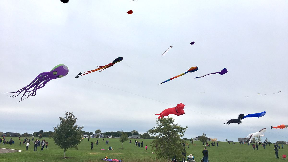 Dozens of kites flew at North Liberty's Centennial Park on Oct. 6, 2019, as part of a mega-kite...