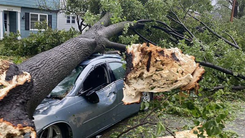 A tree crushes a car in Cedar Rapids after a wind storm on Monday, August 10, 2020.