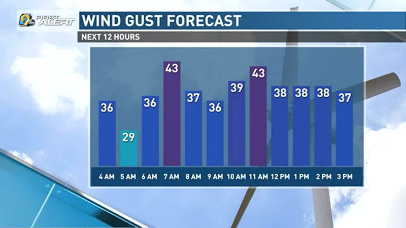 Wind gusts up to 40 mph