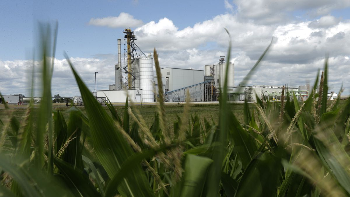 FILE - In this July 20, 2013, file photo, an ethanol plant stands next to a cornfield near...