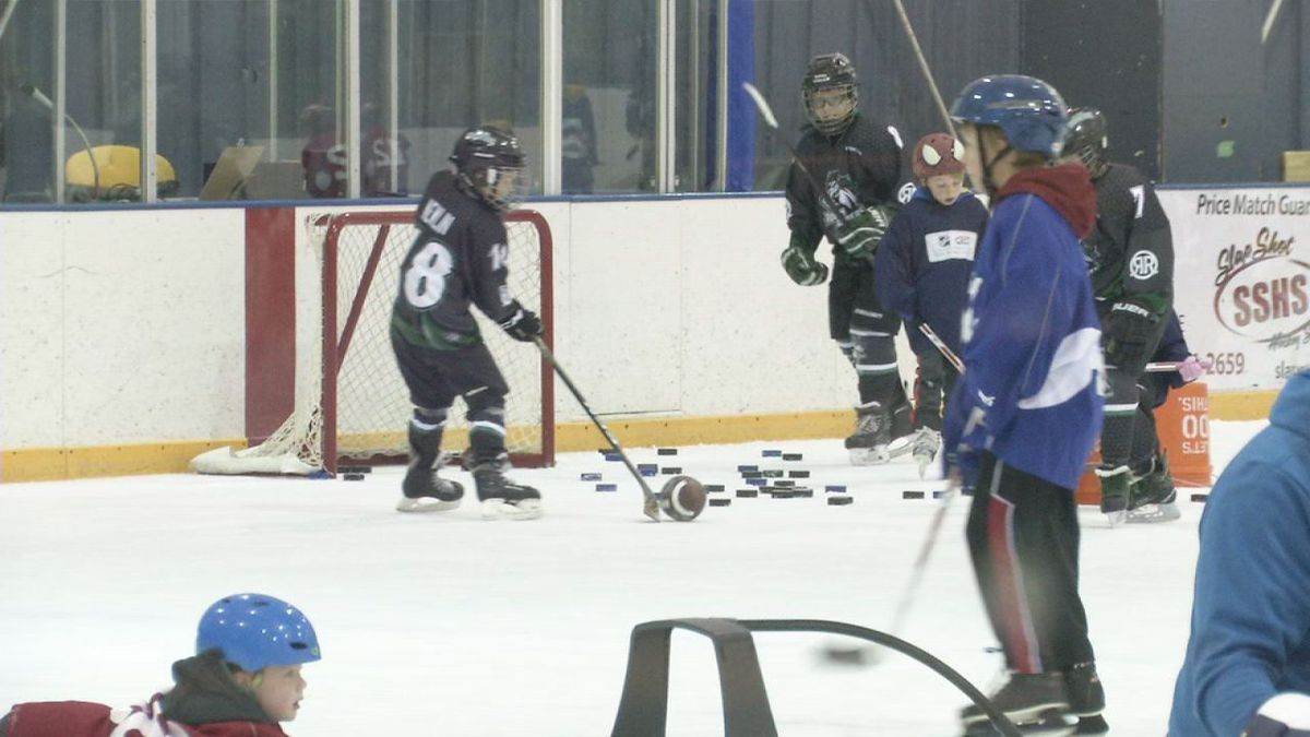 Kids in the Cedar Rapids area had a chance to try out hockey Saturday.