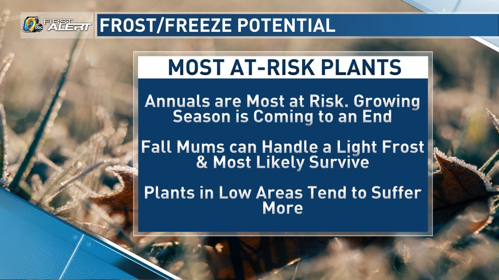 Most At-Risk Plants during Freeze