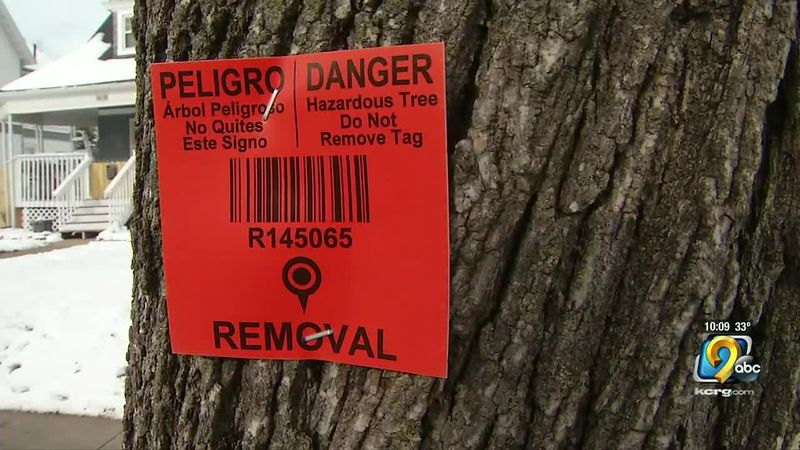Tree Removal Sign