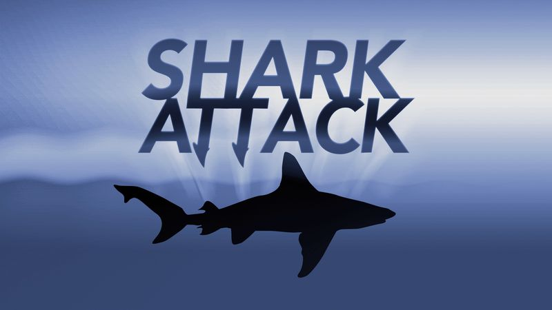 A 55-year-old man died after suffering serious injuries from a shark attack at Cable Beach, a...
