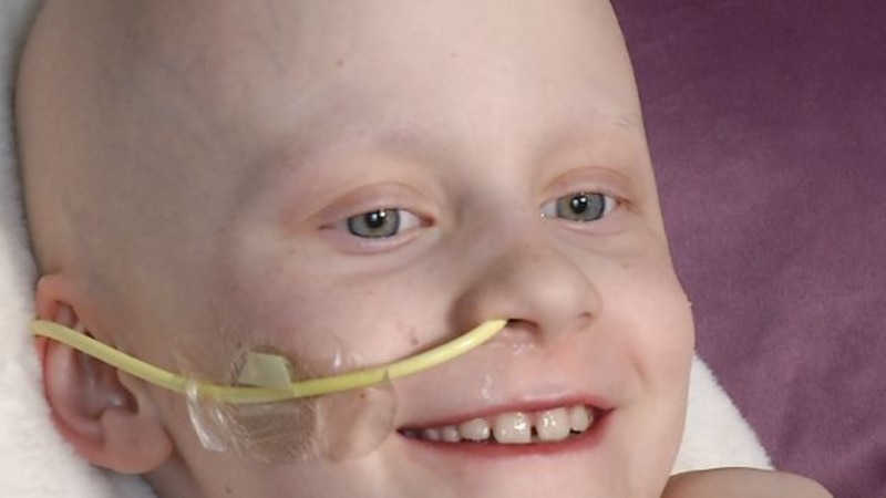 Cedar Rapids 8-year-old fighting rare cancer will get a Make-A-Wish playground for backyard