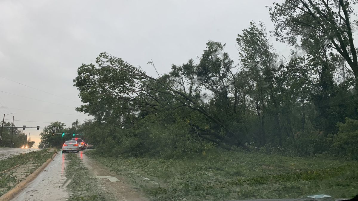 Storm damage in Linn County on Monday, August 11, 2020. (KCRG)