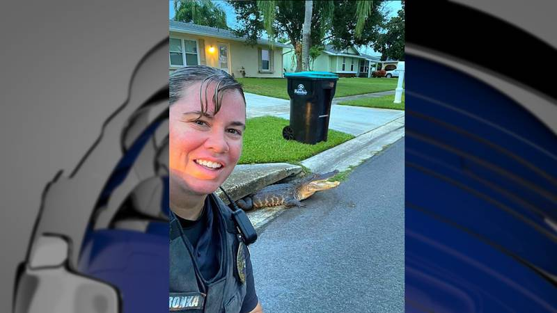 The Palm Bay Police Department posted this photo.