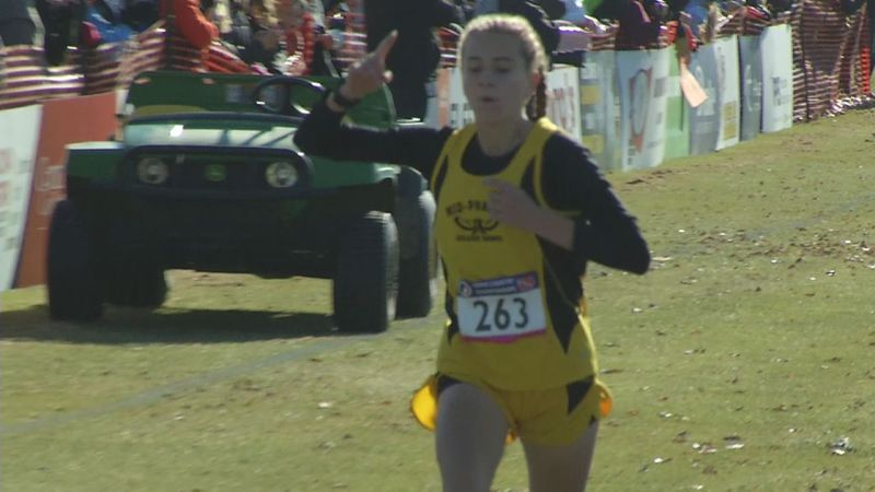 Four area runners claimed state individual championships in the Class 2A and 1A state cross...